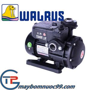 Máy bơm đẩy cao Walrus TS