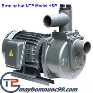 Máy bơm tự hút đầu gang NTP hsp